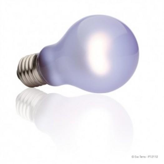 Dienos šviesos lempa/šildanti lempa, 100W