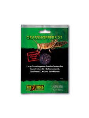 EXO TERRA Specialty Reptile Food, Grasshoppers, vakuumuoti svirpliai, 5 g