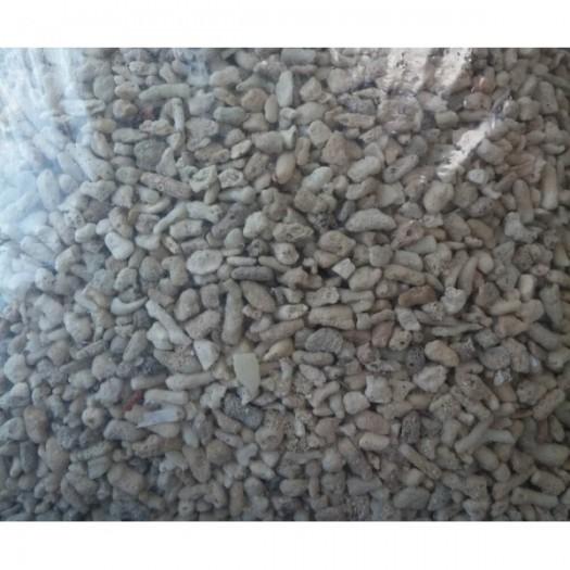 Koralinis gruntas - stambus 1kg