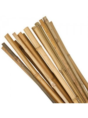 Bambukas 5-10 mm/45 cm, 1 vnt.