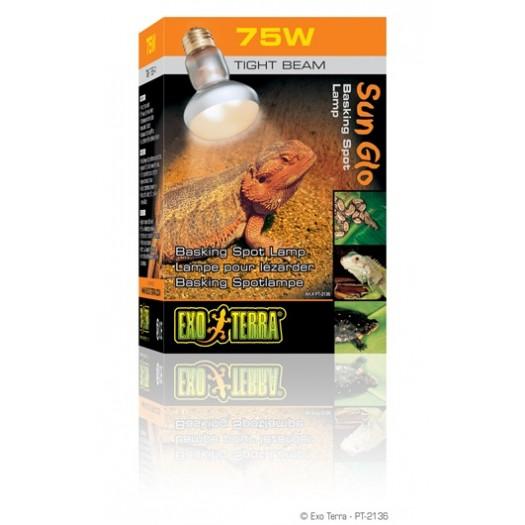 Intense dieninė lempa, 75 W