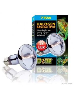 Halogeninė lempa, 75 W