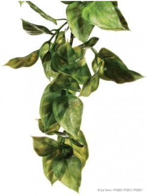Džiunglių Amapalas, mažas (32x10 cm)