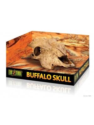 Exo Terra Decor cattle skull Roplių slėptuvė