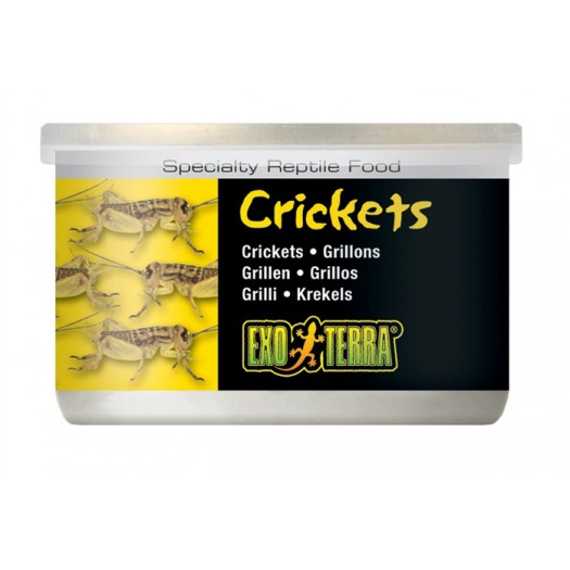 Canned Foods - Crickets Small (maži)